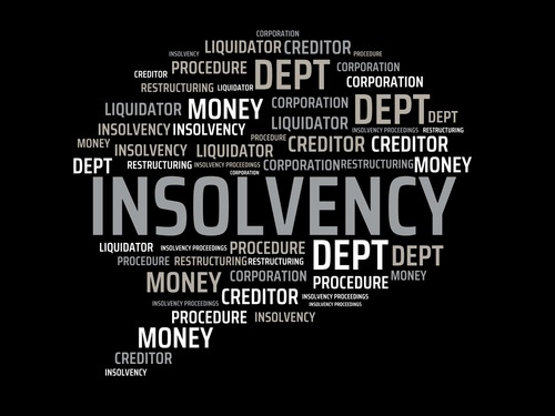 Why the Insolvency Service Has Powers to Investigate